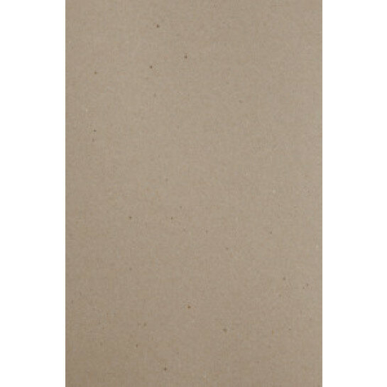 (No. 300322) 12x papier A4 recycled kraft grijs 210 x 297 mm - 100 grams (FSC Recycled Credit)