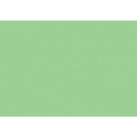 (No. 2098318) Hobbykarton Grasgroen - 270 grams - 500x700mm 50 vellen