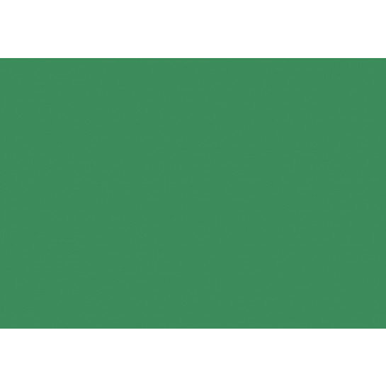 (No. 2098327) Hobbykarton Kerstgroen - 270 grams - 500x700mm - 50 vellen