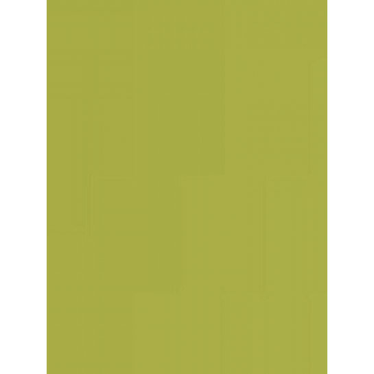 (No. 301951) 6x karton Original 210x297mmA4 mosgroen 200 grams (FSC Mix Credit)