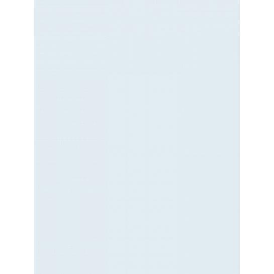 (No. 301956) 6x karton Original 210x297mmA4 babyblauw 200 grams (FSC Mix Credit)