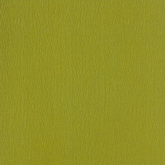 (No. 298951) 10x cardstock Original 302x302mm mosgroen 200 grams (FSC Mix Credit)