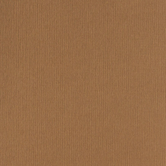 (No. 298939) 10x cardstock Original 302x302mm nootbruin 200 grams (FSC Mix Credit)