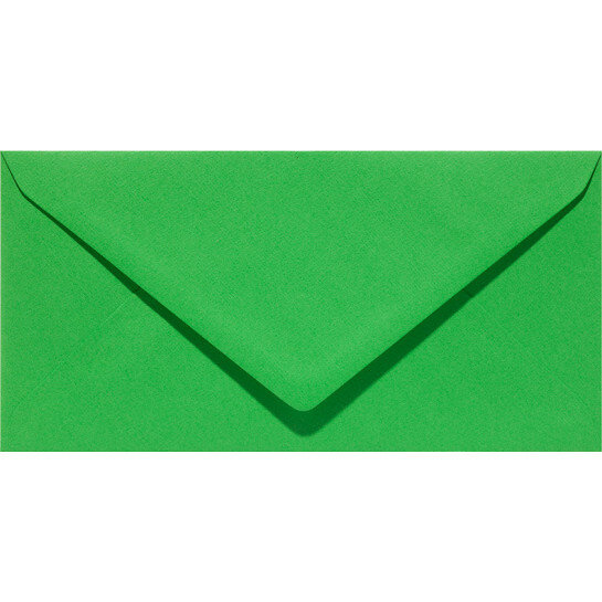 (No. 305907) 6x envelop Original 110x220mmDL grasgroen 105 grams (FSC Mix Credit)