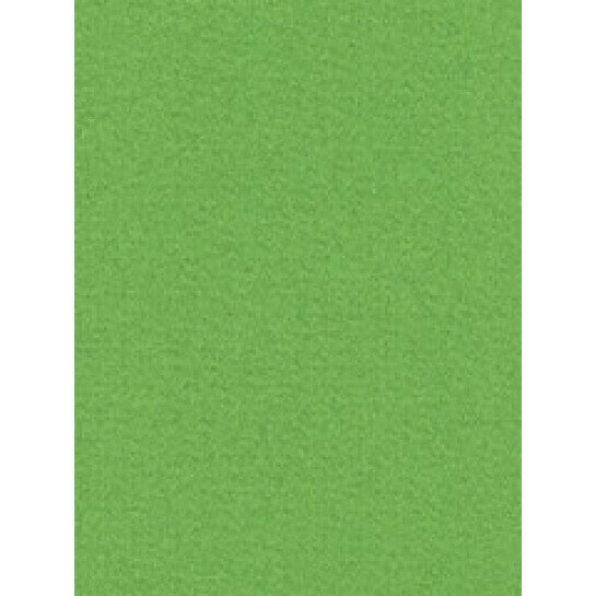 (No. 300907) 12x papier Original 210x297mmA4 grasgroen 105 grams (FSC Mix Credit)