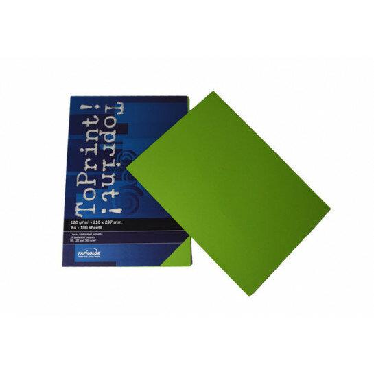 (No. 7138318) 100x papier ToPrint 120gr 210x297mm-A4 Grass green(FSC Mix Credit)