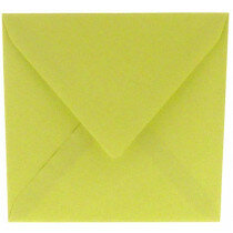 (No. 240970) 50x envelop 160x160mm Original zachtgroen 105 grams (FSC Mix Credit)
