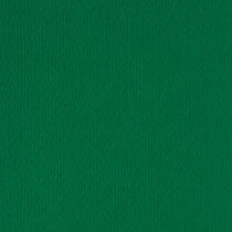 (No. 264950) 50x cardstock Original 302x302mm dennengroen 200 grams (FSC Mix Credit)