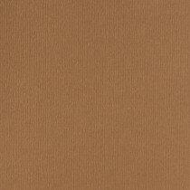 (No. 264939) 50x cardstock Original 302x302mm nootbruin 200 grams (FSC Mix Credit)