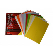 (No. 7128380) 10x25 kleuren papier ToPrint 80gr 210x297mm-A4 Assorti(FSC Mix Credit)