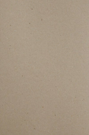(No. 300322) A4 papier recycled kraft grijs 100 gr. - 12 vellen (FSC Recycled 100%)