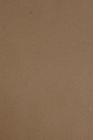 (No. 300323) A4 papier recycled kraft bruin 90 gr. - 12 vellen (FSC Recycled 100%)