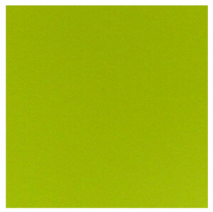 (No. 298967) 10x cardstock Original 302x302 mm appelgroen 200 grams (FSC Mix Credit)