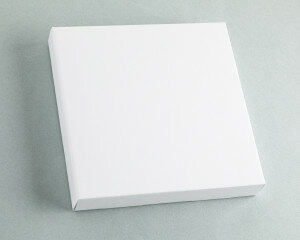 (No. 930000) Kartonnen Canvas blanco