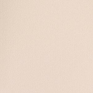 (No. 298925) 10x cardstock Original 302x302mm zalmroze 200 grams (FSC Mix Credit)